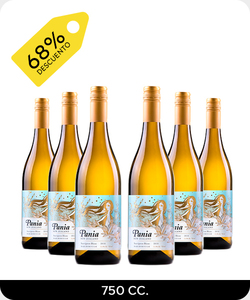 Pack 6 vinos 750cc - Pania Sauvignon Blanc