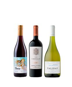 Pack 3 vinos 750 #3
