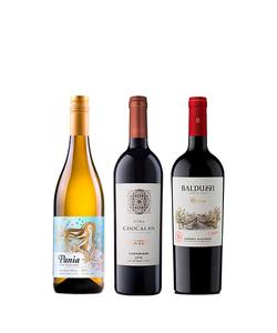 Pack 3 vinos 750 #5