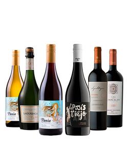 Pack 6 vinos 750 #2