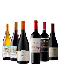 Pack 6 vinos 750 #3