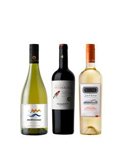 Pack 3 vinos 750 #10