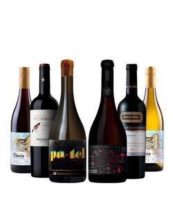 Pack 6 vinos 750 #4
