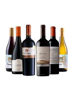 Pack 6 vinos 750 #6