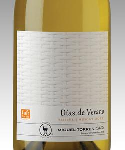 Días de Verano, Miguel Torres