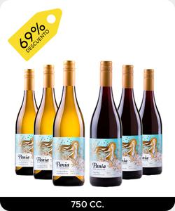 Pack 6 vinos 750cc - Pania Mixto