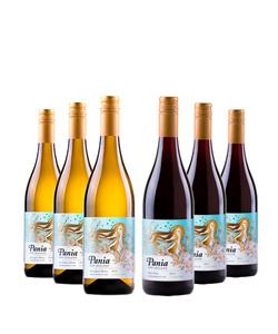 Pack 6 vinos 750 #Pania Mixto