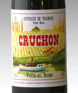 Cruchon PN, Coteaux De Trumao