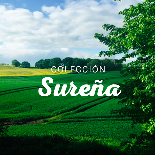 Surena