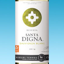 Santa digna 220x220